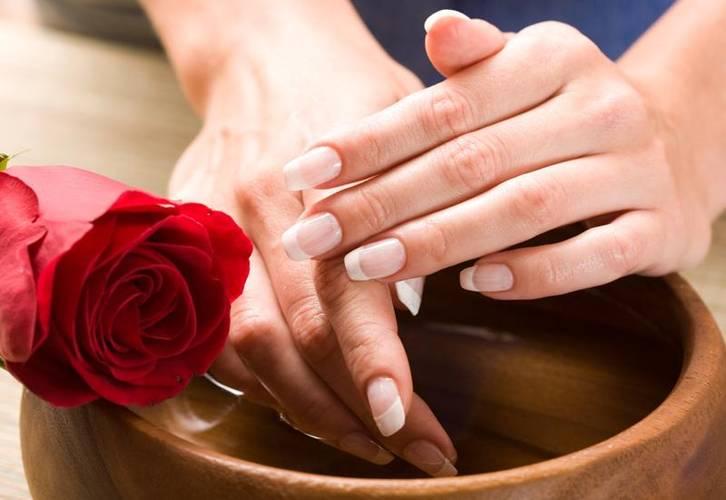 3989-143109-trandafir-a047bea53d