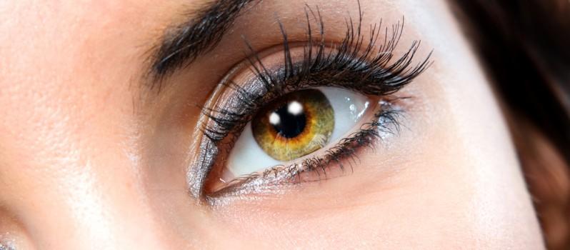 eyelash-product-798x350